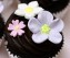 cach-lam-cupcake-chocolate-don-gian-3